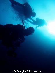 """""""To the depth"""" by Bea & Stef Primatesta"""