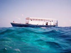 Dive Boat in the Maldives - Fuji underwater disposable ca... by Gary Arnold