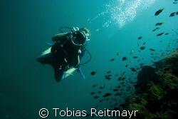 Encounter between video- and photgrapher, Palong, Phi Phi... by Tobias Reitmayr