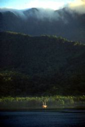 Milne Bay Morning, PNG;  Nikon F, 28-300 Vivitar Lens by Rick Tegeler