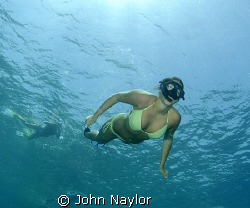 snorkelers. by John Naylor