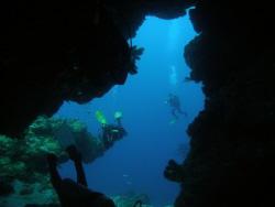 Coral swim-through at Santa Rosa Wall, Cozumel, Mexico. by David Lockwood