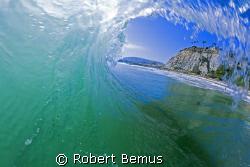 Summer shade...shot 7/5/08...not a re-submit... by Robert Bemus