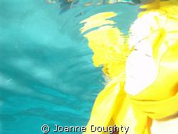 Sea Angel   by Joanne Doughty