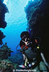 Devil's Grotto in Grand Cayman by Mordechai Saxon