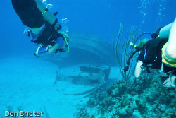 My two boys headed to the wreck of a tug off of Cayman Brac. by Don Bricker