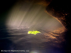 The image of a leaf on a journey through a freshwater cre... by Becky Kagan