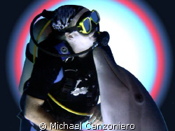 """""""Forbidden Love - Interspecies Style""""  Curacao """"Dolphin ... by Michael Canzoniero"""