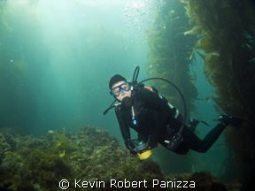 Diver swimming through Catalina's Underwater Park.