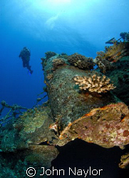 diver on the wreck of carnatic. by John Naylor