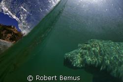 subterranean homesick alien by Robert Bemus