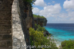 """Just some of the """"1000 steps"""" in Bonaire. Taken with a Ni... by Morgan Ashton"""