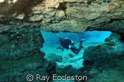Taken at Ginnie Springs, FL.Camera Nikon D-200 by Ray Eccleston