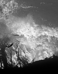 A surf wave breaking amongst kelp and rock.  Viewed from ... by Cal Mero