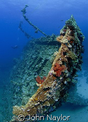 Wreck of the Marcus.Abu Nuhas. by John Naylor