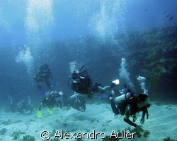 Divers at Fernando de Noronha Island. Brazil. by Alexandro Auler