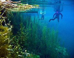 """Free divers in the """"crack"""" at Piccannie ponds, South Aust... by Cal Mero"""