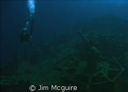 Diver swimming passed an anti-aircraft gun on a sunken Ja... by Jim Mcguire