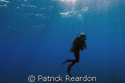 Sun's rays safety stop.  Grand Cayman.  Nikon 12-24/L&M h... by Patrick Reardon