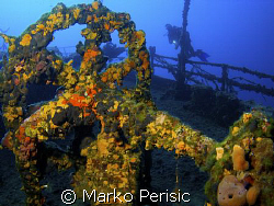 Incrusted in soft corals the fly wheel on the wreck of th... by Marko Perisic