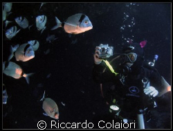 "My Wife: ""The Underwater Photographer"" by Riccardo Colaiori"