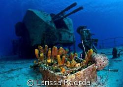 Deck Guns on the MV Captain Keith Tibbett's wreck in Caym... by Larissa Roorda