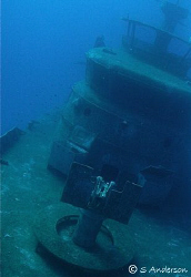 This photo was taken last year while diving off Nassau. T... by Steven Anderson