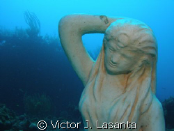 new in parguera area,PUERTO RICO,,,mermaid point is the d... by Victor J. Lasanta