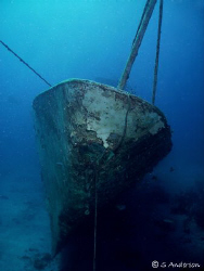 The David Tucker Wreck located off Nassau. This photo was... by Steven Anderson