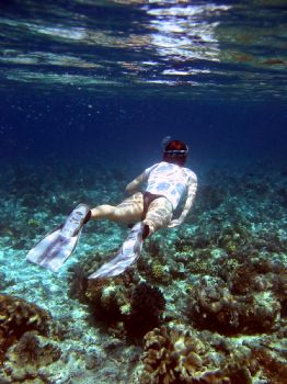 snorkelling in sulawesi by Huw Jenkins