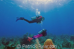 My daughter and wife in the crystal waters of Grand Cayma... by Patrick Reardon