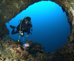 Diver examines soft coral in cave  D100 10,5mm by Eric Orchin