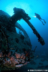 Stern Gun of the Thistlegorm, Red Sea, Egypt.  by Jim Garland