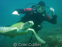 kane with turtle by Colin Cubbin