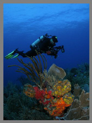My diving buddy Abimael.   by Juan Torres