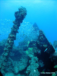 Nebo, Bow Section - Just an awesome dive for panoramic Sh... by Allen Walker