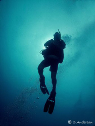 Final shots during ascent. This photo was taken in Roatan... by Steven Anderson
