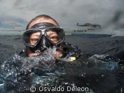 AT HE WALL,  WEST DIVERS PR, LAJAS LA PARGUERA. by Osvaldo Deleon