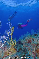 Daughter and wife above the reef.  Incredibly clear condi... by Patrick Reardon