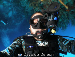 UP SIDE DOWN, SELF PHOTOGRAPHY,  HAVING SO MUCH FUN!!!!!!!! by Osvaldo Deleon