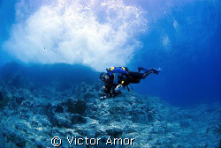 Stormy dive by Victor Amor