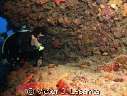 mr. bruno at mermaid point in parguera area!!!PUERTO RICO by Victor J. Lasanta