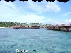 View of Sipadan Water Village Restaurant from my floating... by Alex Lim