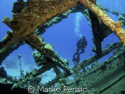 Red Sea diver framed. by Marko Perisic