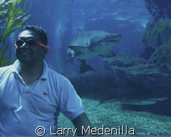 We were having fun at the Siam Mall Aquarium in Bangkok. ... by Larry Medenilla