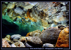 Colors and Reflexion... in the beautiful waters of the Ve... by Michel Lonfat