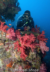 Dive Master in Fiji by Michael Shope