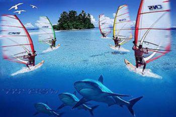 Solomon  Islands - COMPOSING - surfies/silvertips/birds -... by Manfred Bail