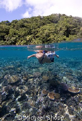 snorkler enjoying the clear waters of Fiji by Michael Shope