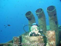 image shot with the Sony HDR HC1Ein camera mode useing ek... by Carmel Cutajar